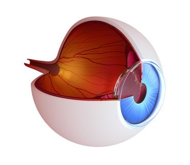 75919d6435 L'orthokératologie est une adaptation particulière en lentilles de contact  rigides spécifiques qui consiste à porter les lentilles de contact  uniquement la ...