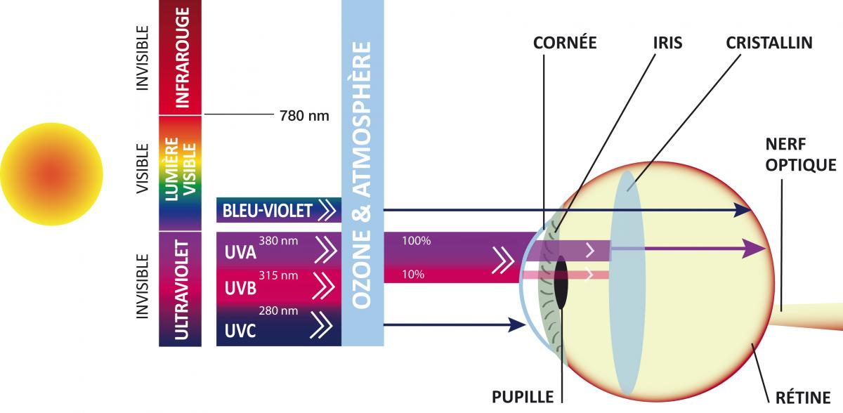 8f2aa946daf853 Zoom sur votre protection solaire   Le Guide De La Vue